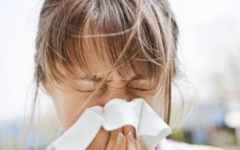 4 Ways to Get Rid of Allergies